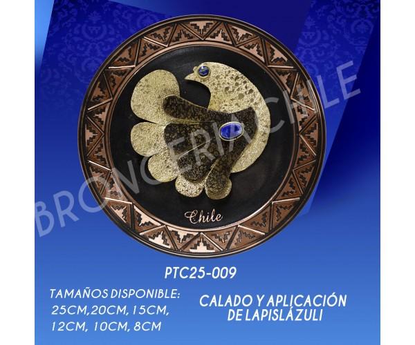 PTC25-009