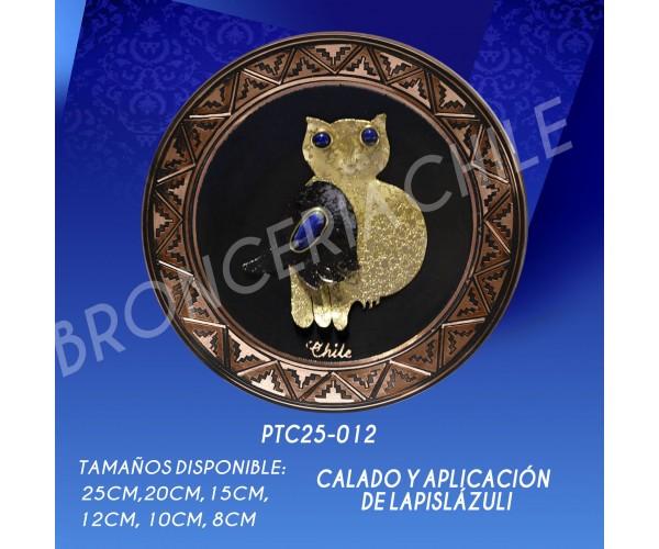 PTC25-012