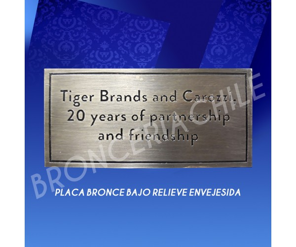 PLACA BRONCE BAJO RELIEVE EN VEJESIDA