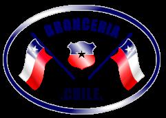 Broncería Chile